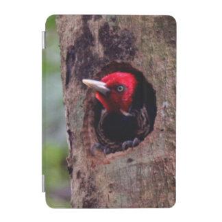 Central America, Costa Rica, Manuel Antonio iPad Mini Cover