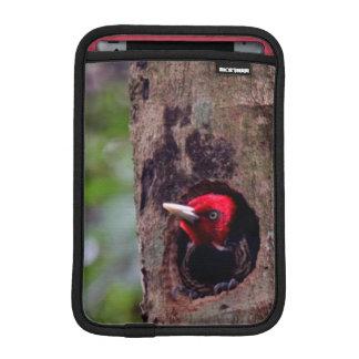 Central America, Costa Rica, Manuel Antonio iPad Mini Sleeve