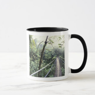 Central America, Costa Rica, Monteverde Cloud Mug