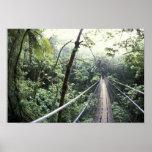 Central America, Costa Rica, Monteverde Cloud Print