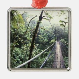 Central America, Costa Rica, Monteverde Cloud Silver-Colored Square Decoration