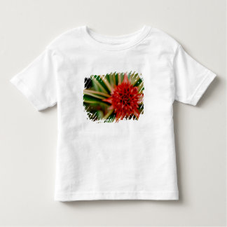 Central America, Costa Rica, San Vito, Wilson Toddler T-Shirt
