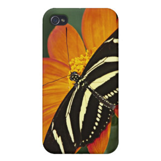 Central America, Costa Rica, Selva Verde. 4 Cover For iPhone 4