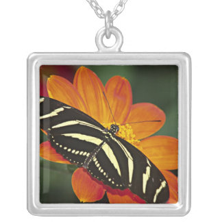 Central America, Costa Rica, Selva Verde. 4 Silver Plated Necklace