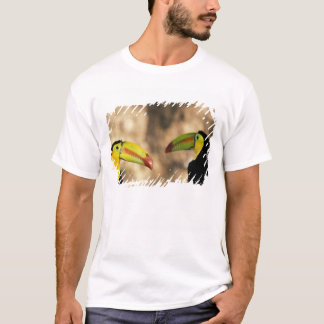Central America, Honduras. Keel-billed Toucan 2 T-Shirt