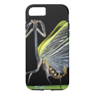 Central America, Panama, Barro Colorado Island. 3 iPhone 8/7 Case