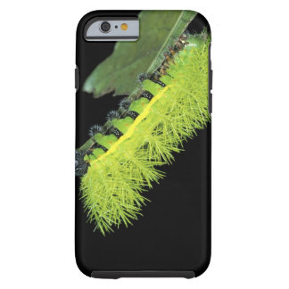 Central America, Panama, Barro Colorado Island. 4 Tough iPhone 6 Case
