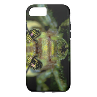 Central America, Panama, Barro Colorado Island. 6 iPhone 8/7 Case