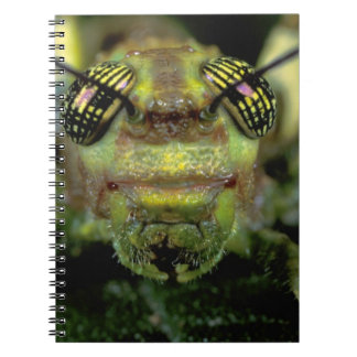 Central America, Panama, Barro Colorado Island. 6 Notebook