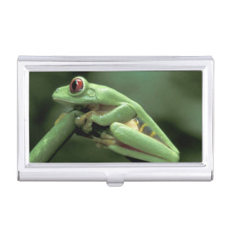 Central America, Panama, Barro Colorado Island, Business Card Holder