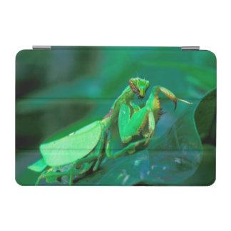 Central America, Panama, Barro Colorado Island. iPad Mini Cover