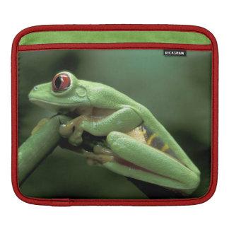 Central America, Panama, Barro Colorado Island, iPad Sleeve