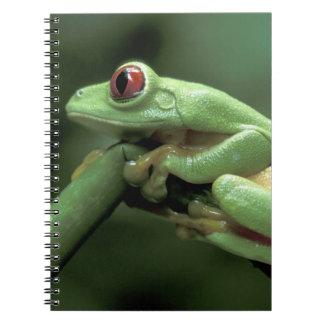 Central America, Panama, Barro Colorado Island, Notebook