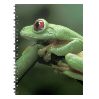 Central America, Panama, Barro Colorado Island, Spiral Notebook