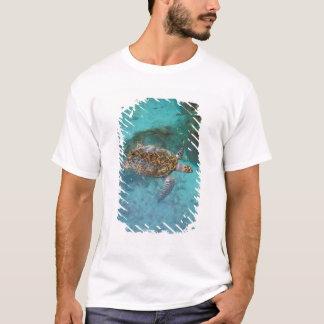 Central America, Panama, Bocas Del Torro Island. T-Shirt