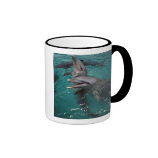 Central America, Panama. Bottle nosed dolphins Coffee Mug