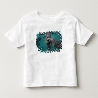 Central America, Panama. Bottle nosed dolphins Shirts