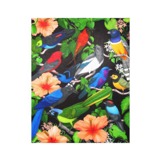 Central American Wild Birds Wrapped Canvas Stretched Canvas Print