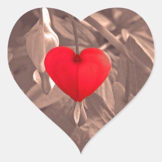 Central Heart Heart Sticker