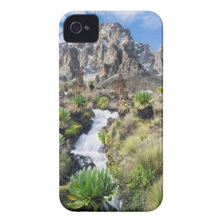 Central Mount Kenya National Park iPhone 4 Cover