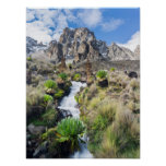 Central Mount Kenya National Park Poster