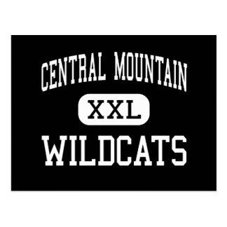 Central Mountain - Wildcats - High - Mill Hall Postcard