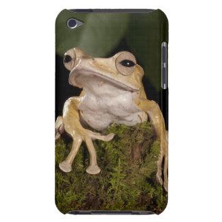 Central PA, USA,. Borneo Eared Frog; iPod Case-Mate Case