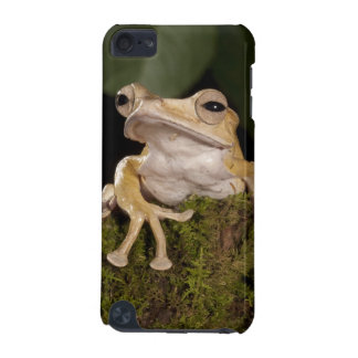 Central PA, USA,. Borneo Eared Frog; iPod Touch (5th Generation) Case