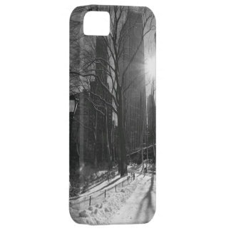 Central Park and Manhattan Skyline, New York City iPhone 5 Cases