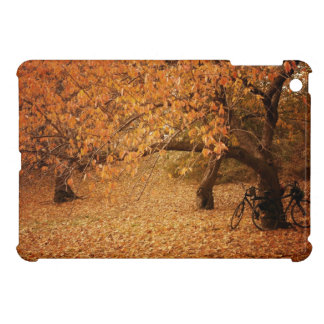 Central Park Autumn - New York City iPad Mini Cover