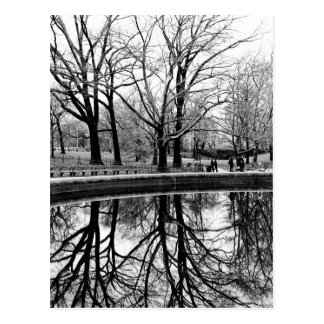 Central Park Black and White Landscape Photo Postcard