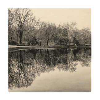 Central Park Black and White Landscape Photo Wood Wall Art