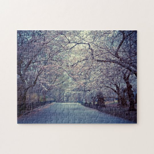 Central Park Cherry Blossom Path Jigsaw Puzzle