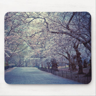 Central Park Cherry Blossom Path Mouse Mat