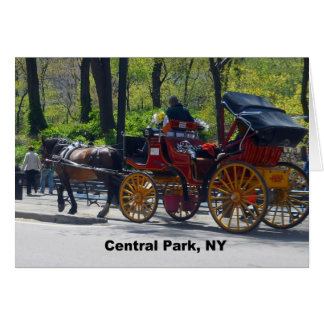 Central Park, Horse and Carriage Card