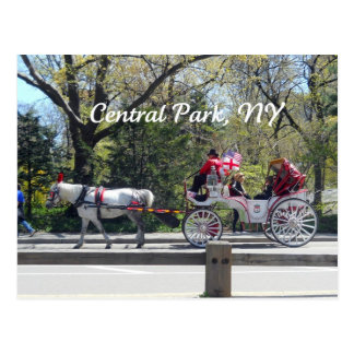 Central Park, Horse and Carriage Postcard