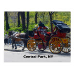 Central Park, Horse and Carriage Postcards