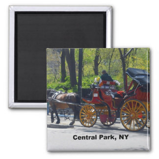 Central Park, Horse and Carriage Square Magnet