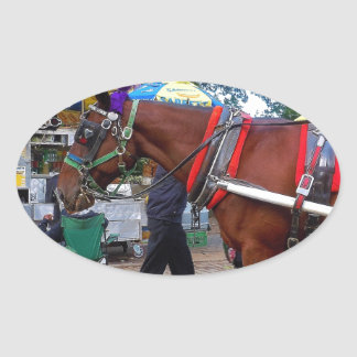 Central Park Horse Oval Sticker