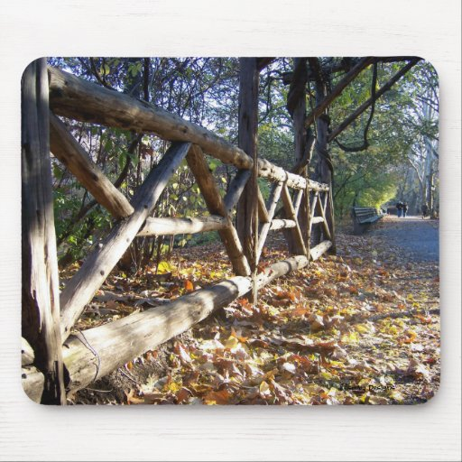 Central Park in Autumn Mousepad