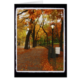 Central Park in Autumn Note Card