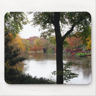 Central Park in Fall Mousepad