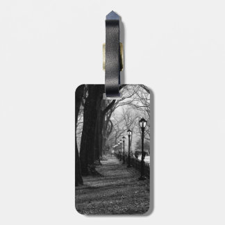 Central Park in New York City Luggage Tag