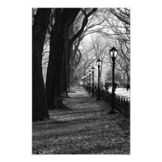 Central Park in New York City Photo Print