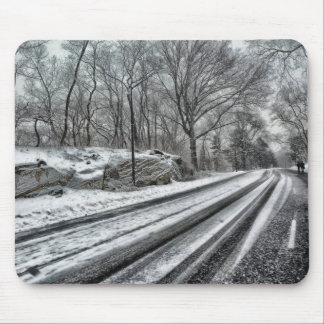 Central Park in winter Mouse Pad
