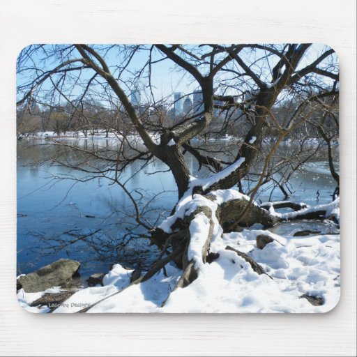 Central Park in Winter Mousepad