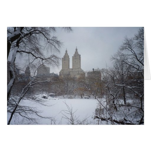Central Park in Winter, Through the Trees Greeting Card
