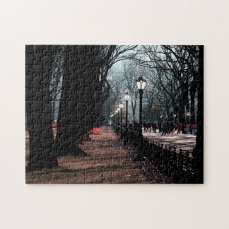 Central Park Landscape Lampposts Photo Jigsaw Puzzle