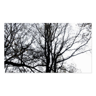 Central Park late autumn almost Barren Tree B W Business Card Templates