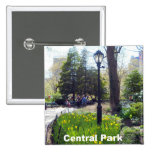 Central Park, New York City Pin